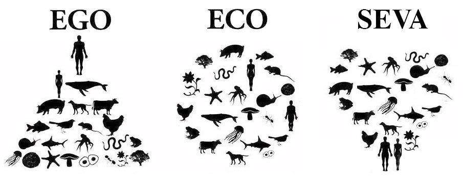 ego-eco-seva
